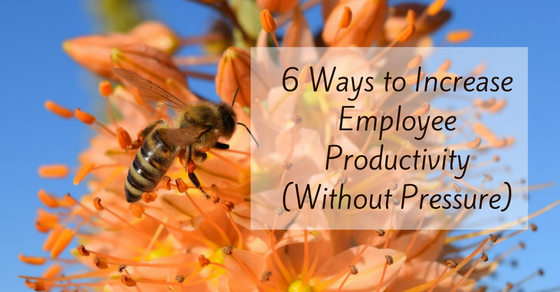 6 Ways to Increase Employee Productivity and Make Them Love You